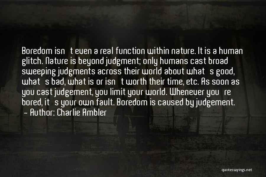 Good Judgement Quotes By Charlie Ambler