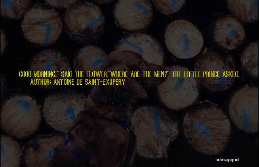 Good Morning Quotes By Antoine De Saint-Exupery