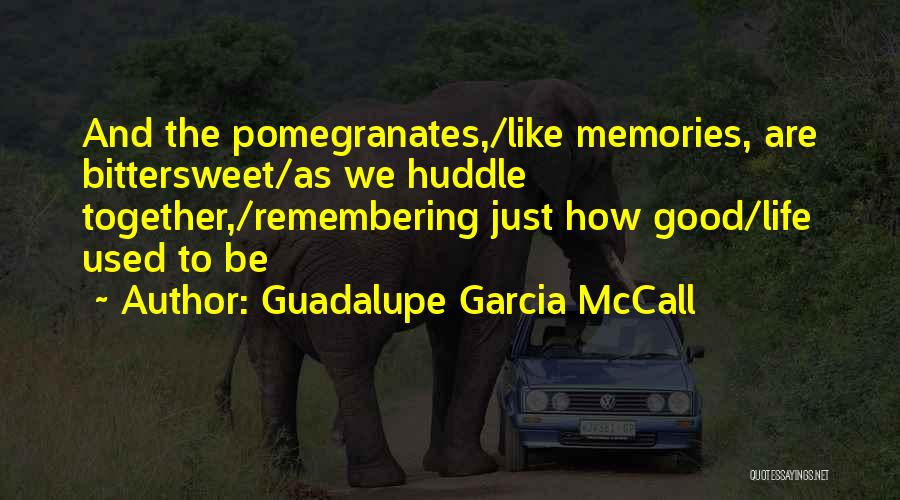 Good Remembering Life Quotes By Guadalupe Garcia McCall