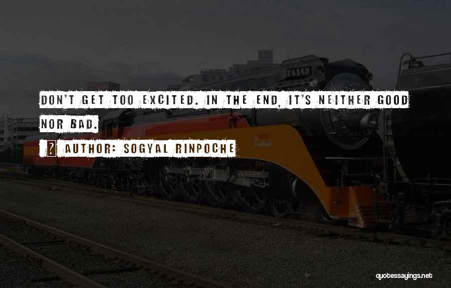 Good Things Come To An End Quotes By Sogyal Rinpoche