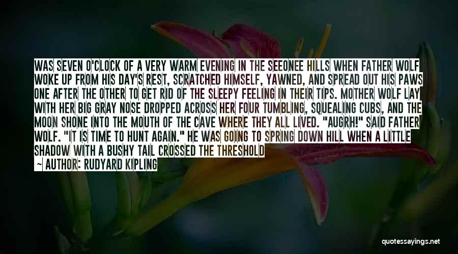 Good Tumbling Quotes By Rudyard Kipling