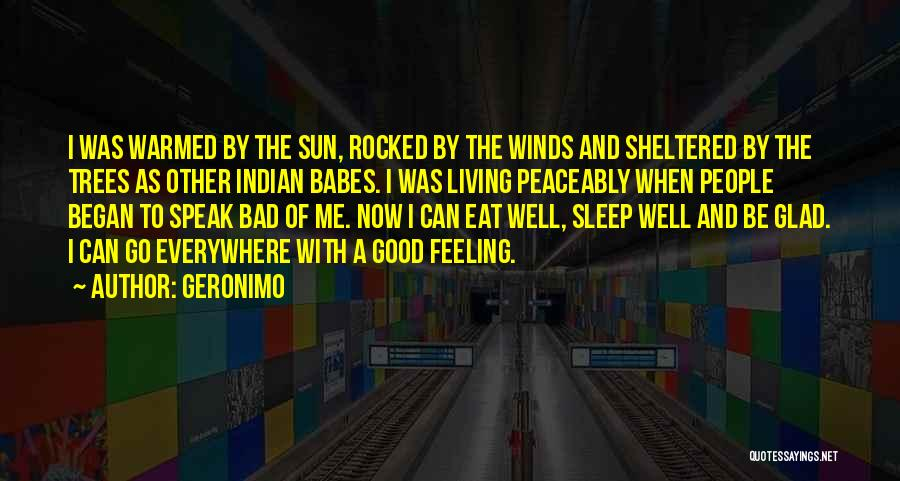 Good Winds Quotes By Geronimo