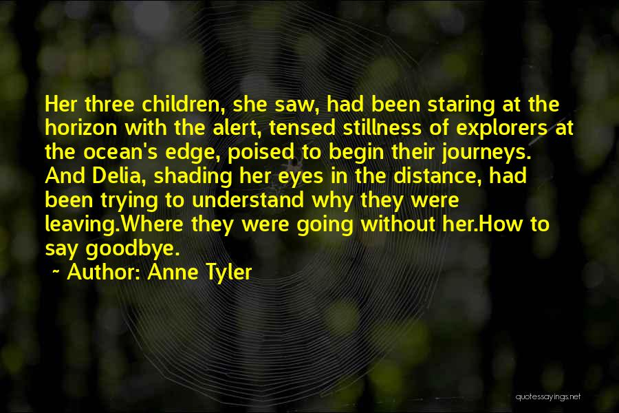 Goodbye In Her Eyes Quotes By Anne Tyler