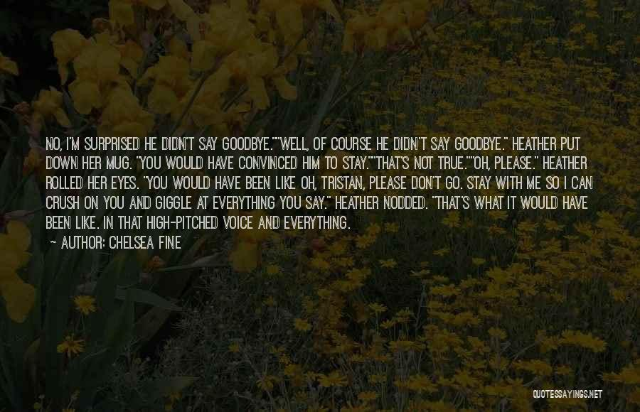 Goodbye In Her Eyes Quotes By Chelsea Fine