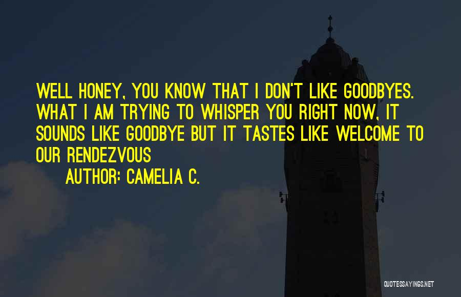 Goodbyes For Now Quotes By Camelia C.