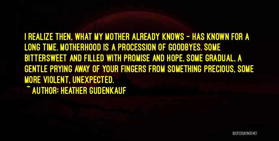 Goodbyes For Now Quotes By Heather Gudenkauf