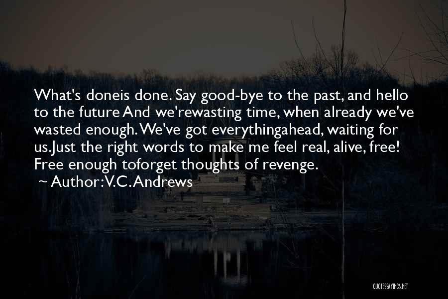 Goodbyes For Now Quotes By V.C. Andrews
