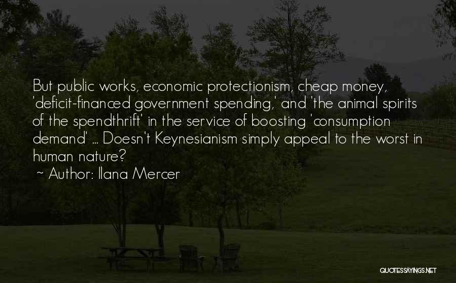 Government Deficit Quotes By Ilana Mercer