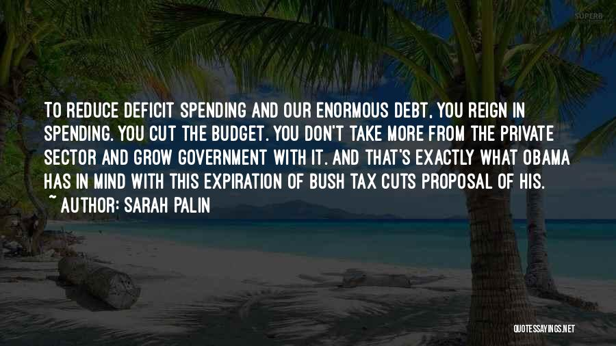 Government Deficit Quotes By Sarah Palin