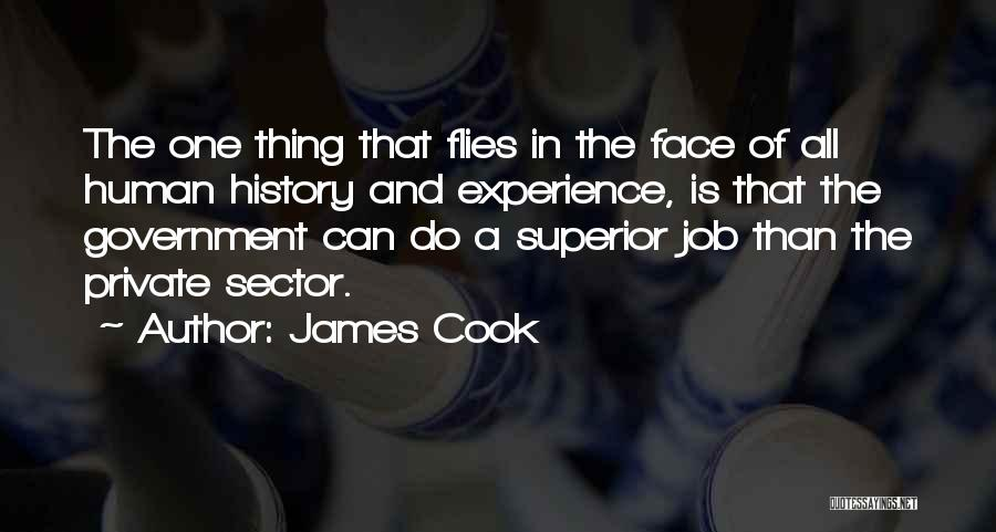 Government Job Quotes By James Cook
