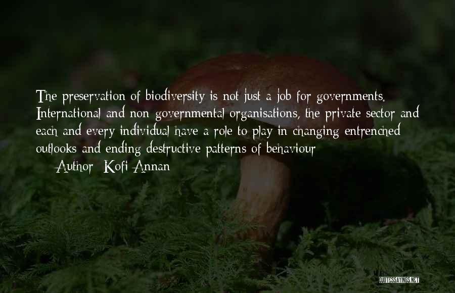 Government Job Quotes By Kofi Annan