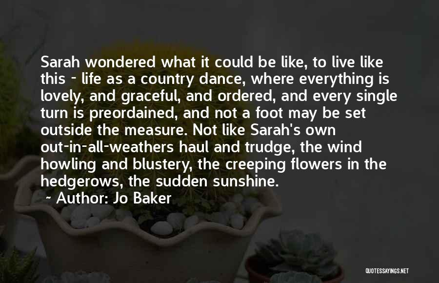 Graceful Dance Quotes By Jo Baker