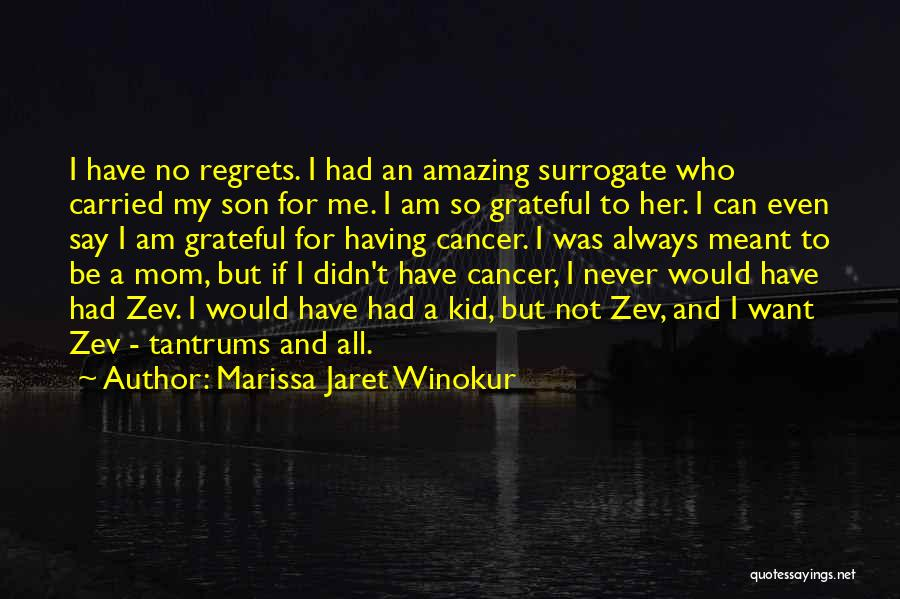 Grateful For Who I Am Quotes By Marissa Jaret Winokur