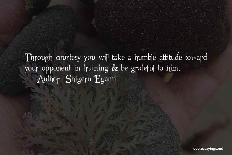 Grateful Quotes By Shigeru Egami