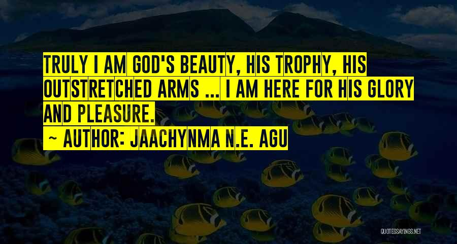 Gratitude For Success Quotes By Jaachynma N.E. Agu