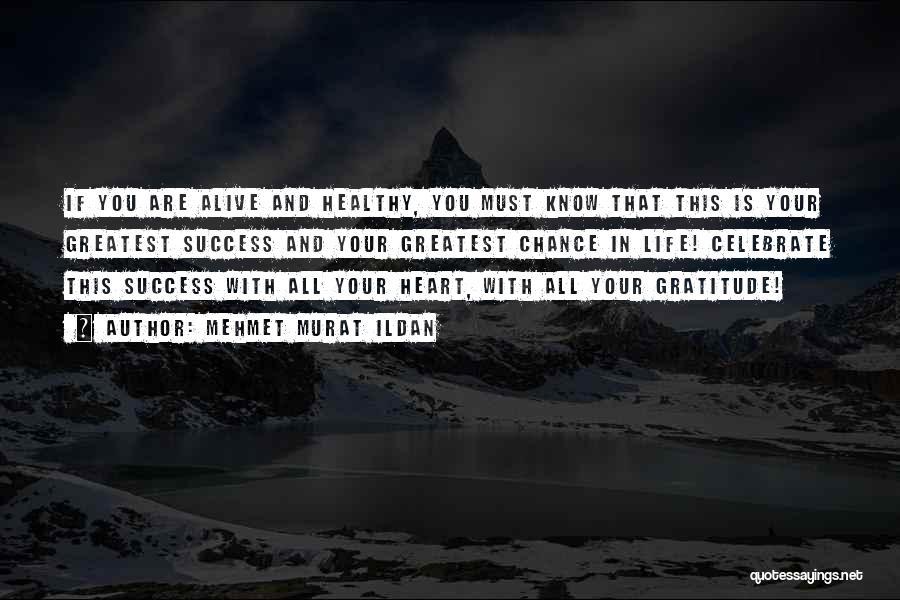 Gratitude For Success Quotes By Mehmet Murat Ildan