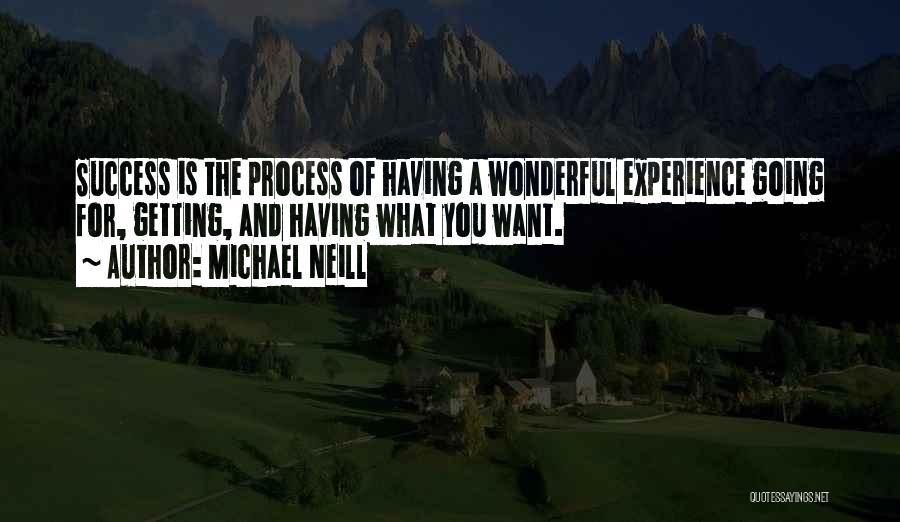 Gratitude For Success Quotes By Michael Neill