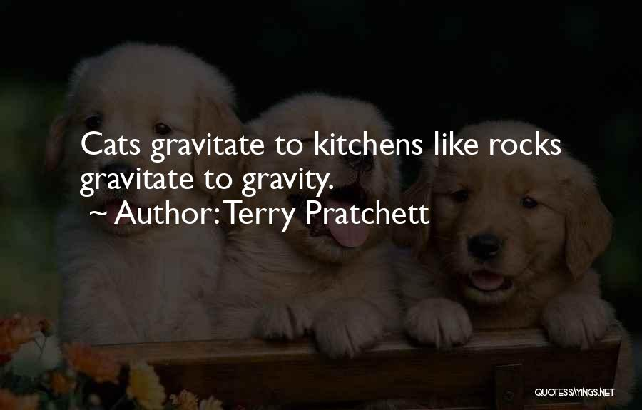 Gravitate Quotes By Terry Pratchett