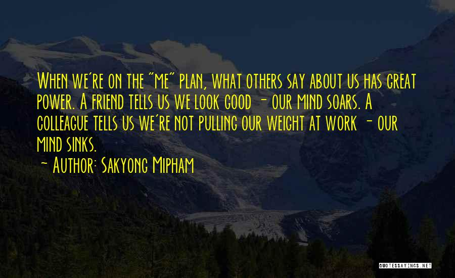 Great Colleague Quotes By Sakyong Mipham