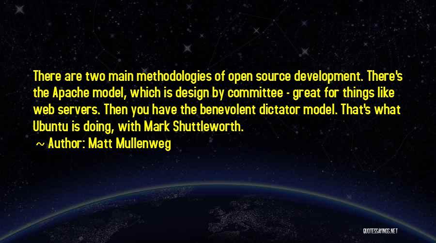 Great Dictator Quotes By Matt Mullenweg