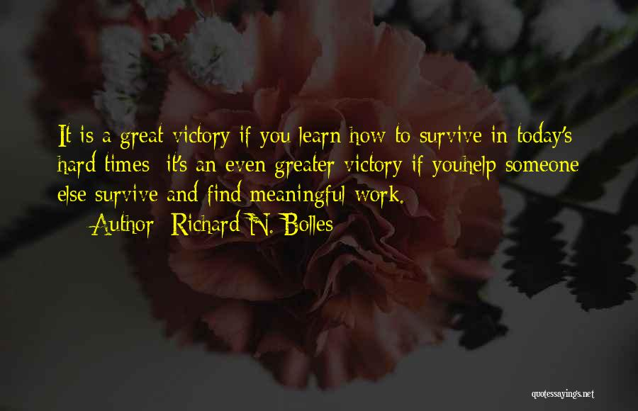 Great Hard Work Quotes By Richard N. Bolles