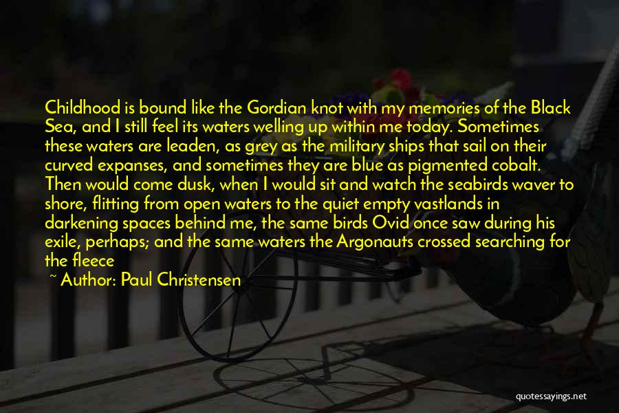 Great Mythology Quotes By Paul Christensen