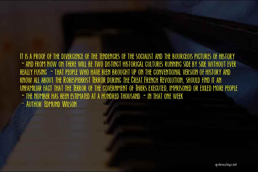 Great Socialist Quotes By Edmund Wilson