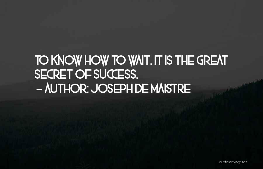 Great Success Motivational Quotes By Joseph De Maistre