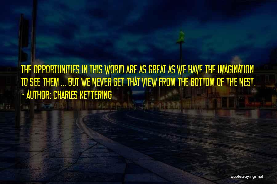 Great View Quotes By Charles Kettering