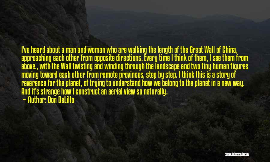 Great View Quotes By Don DeLillo