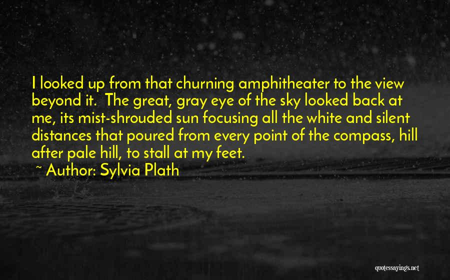 Great View Quotes By Sylvia Plath