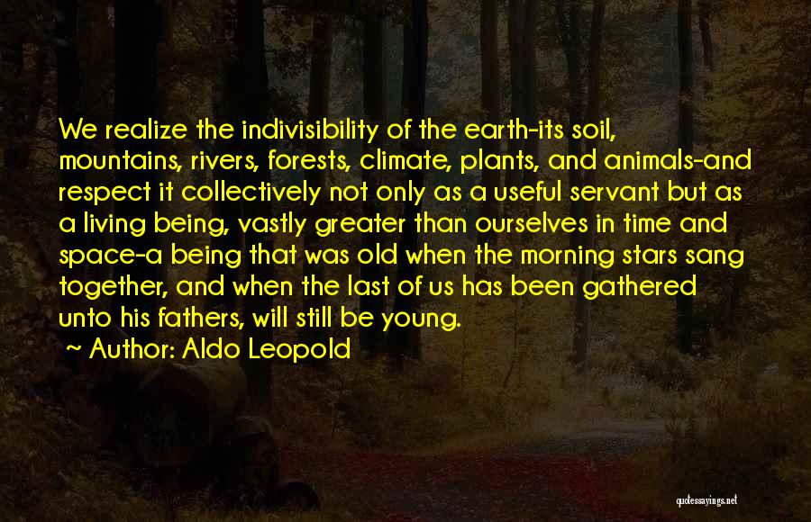 Greater Than Ourselves Quotes By Aldo Leopold