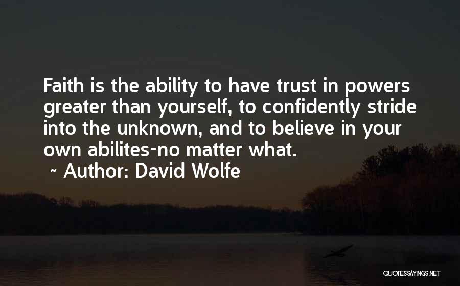Greater Than Yourself Quotes By David Wolfe