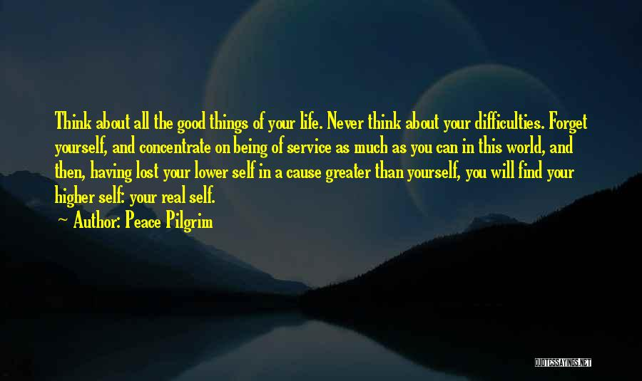 Greater Than Yourself Quotes By Peace Pilgrim