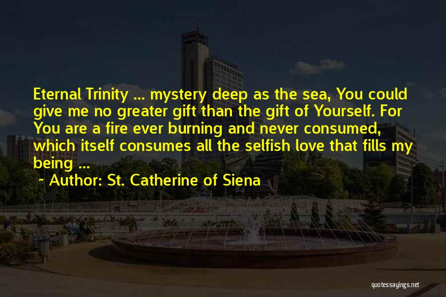 Greater Than Yourself Quotes By St. Catherine Of Siena
