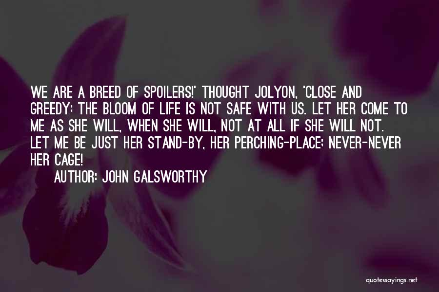 Greedy Quotes By John Galsworthy