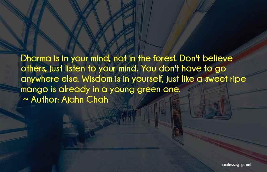 Green Mango Quotes By Ajahn Chah