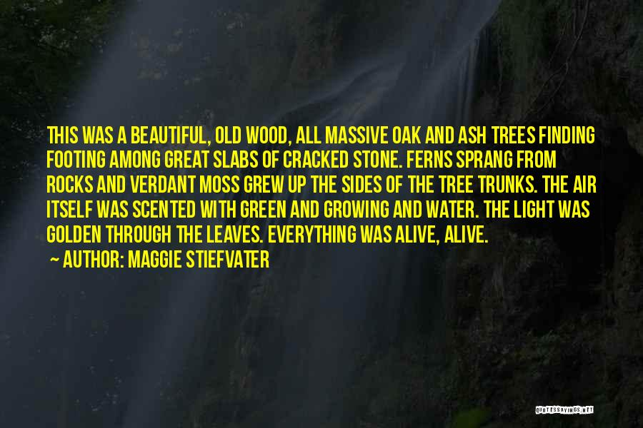 Green Moss Quotes By Maggie Stiefvater
