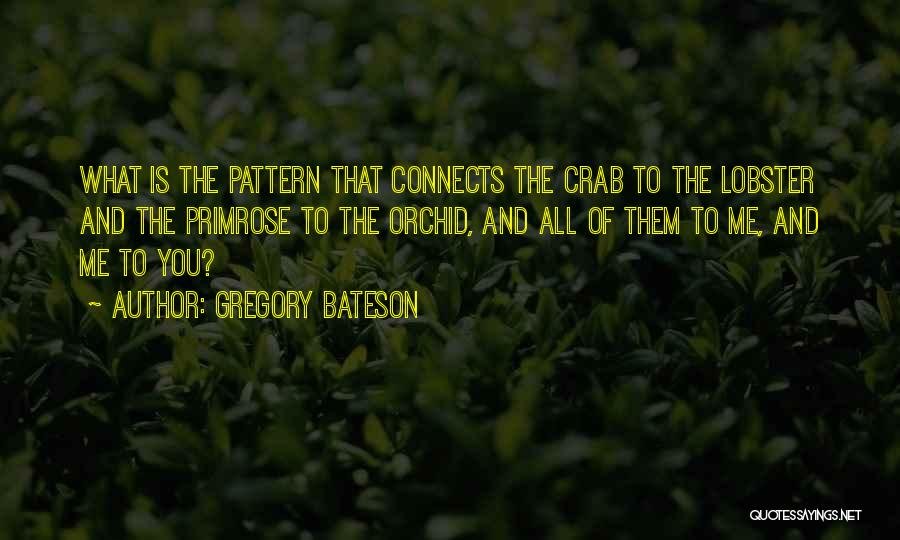 Gregory Bateson Quotes 2096728