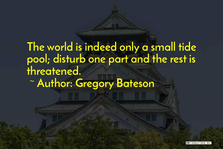 Gregory Bateson Quotes 660520