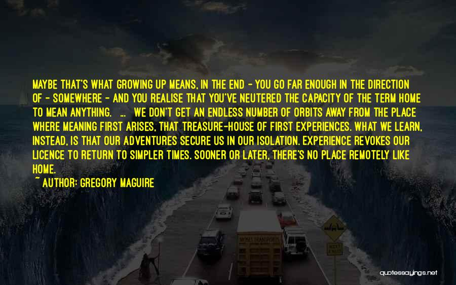 Gregory Maguire Quotes 1849969