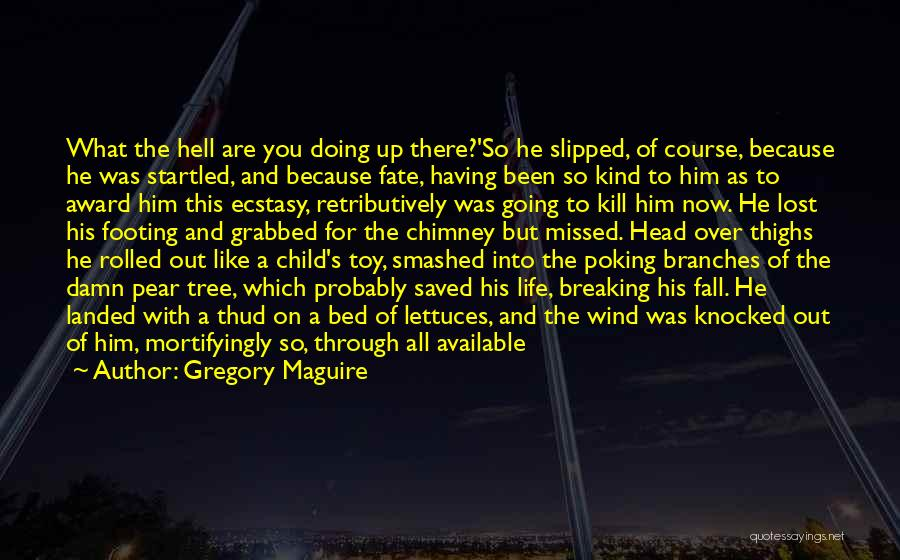 Gregory Maguire Quotes 251541
