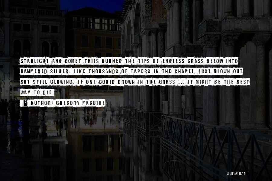 Gregory Maguire Quotes 408738