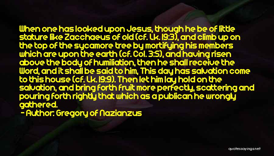 Gregory Of Nazianzus Quotes 748521