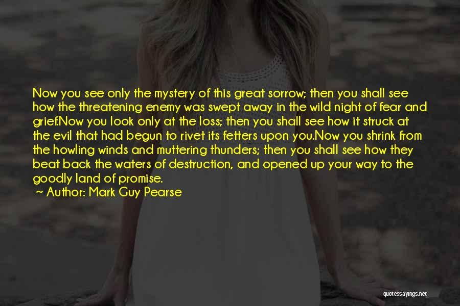 Grief And God Quotes By Mark Guy Pearse