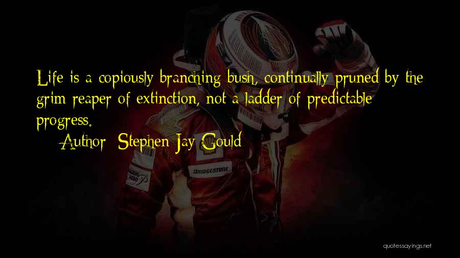Grim Reaper Quotes By Stephen Jay Gould