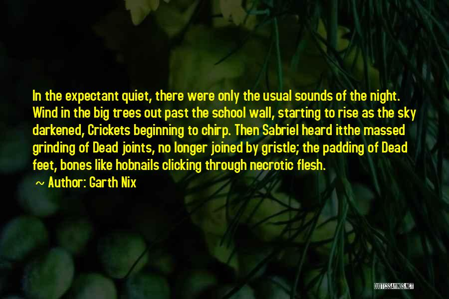 Grinding Quotes By Garth Nix