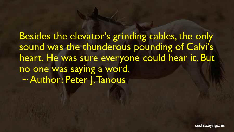Grinding Quotes By Peter J. Tanous