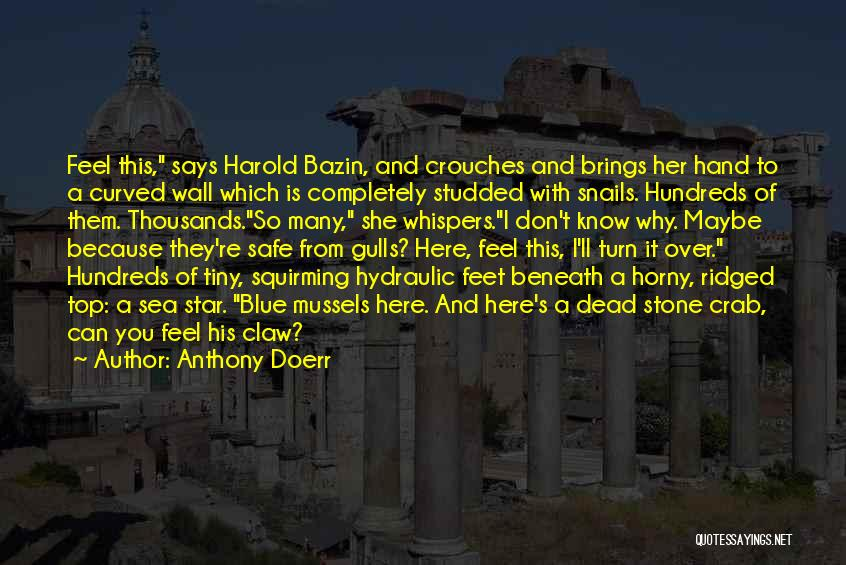 Grotto Quotes By Anthony Doerr