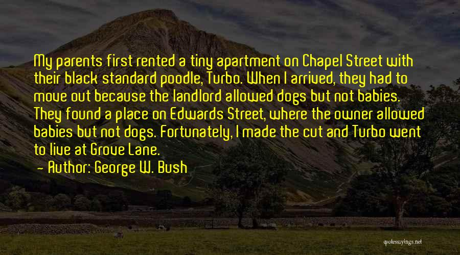 Grove Street Quotes By George W. Bush